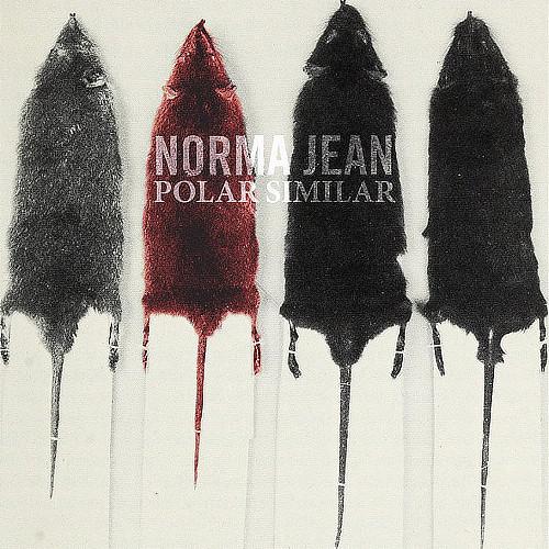 NORMA JEAN - Polar Similar