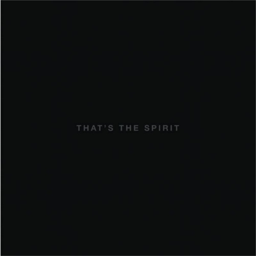 bring me the horizon /That's the spirit
