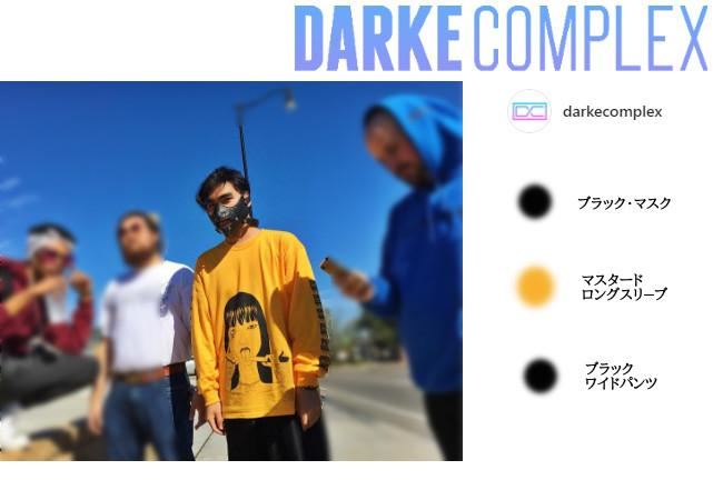 Drake complex