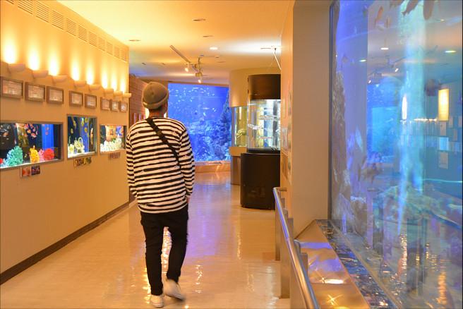 水族館 うおっちかん