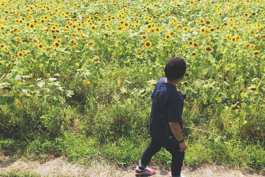 小野市立ひまわりの丘公園