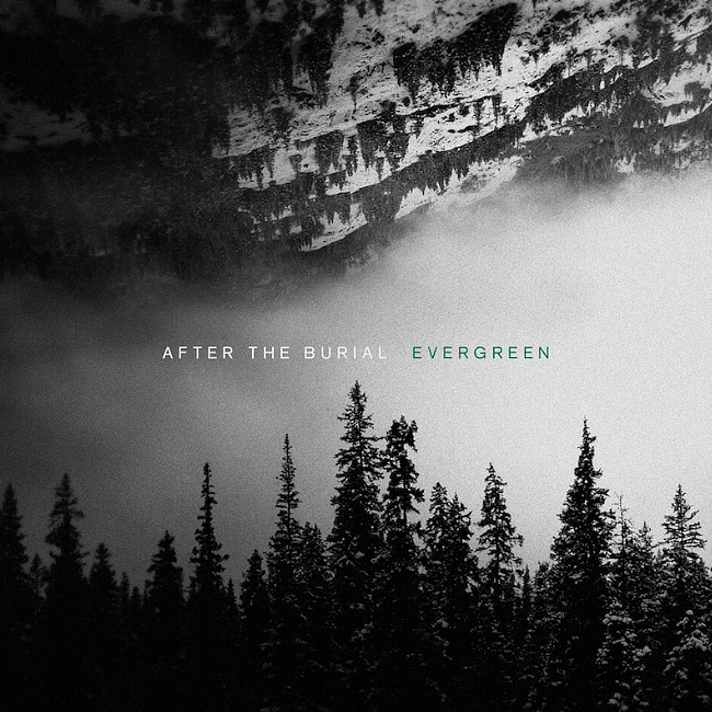 AFTER THE BURIAL 「EVERGREEN」